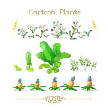 Plantae series cartoon plants: Botany set