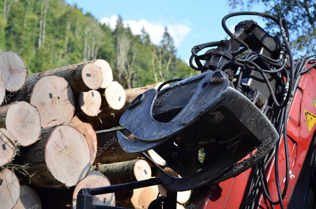 loader timber truck