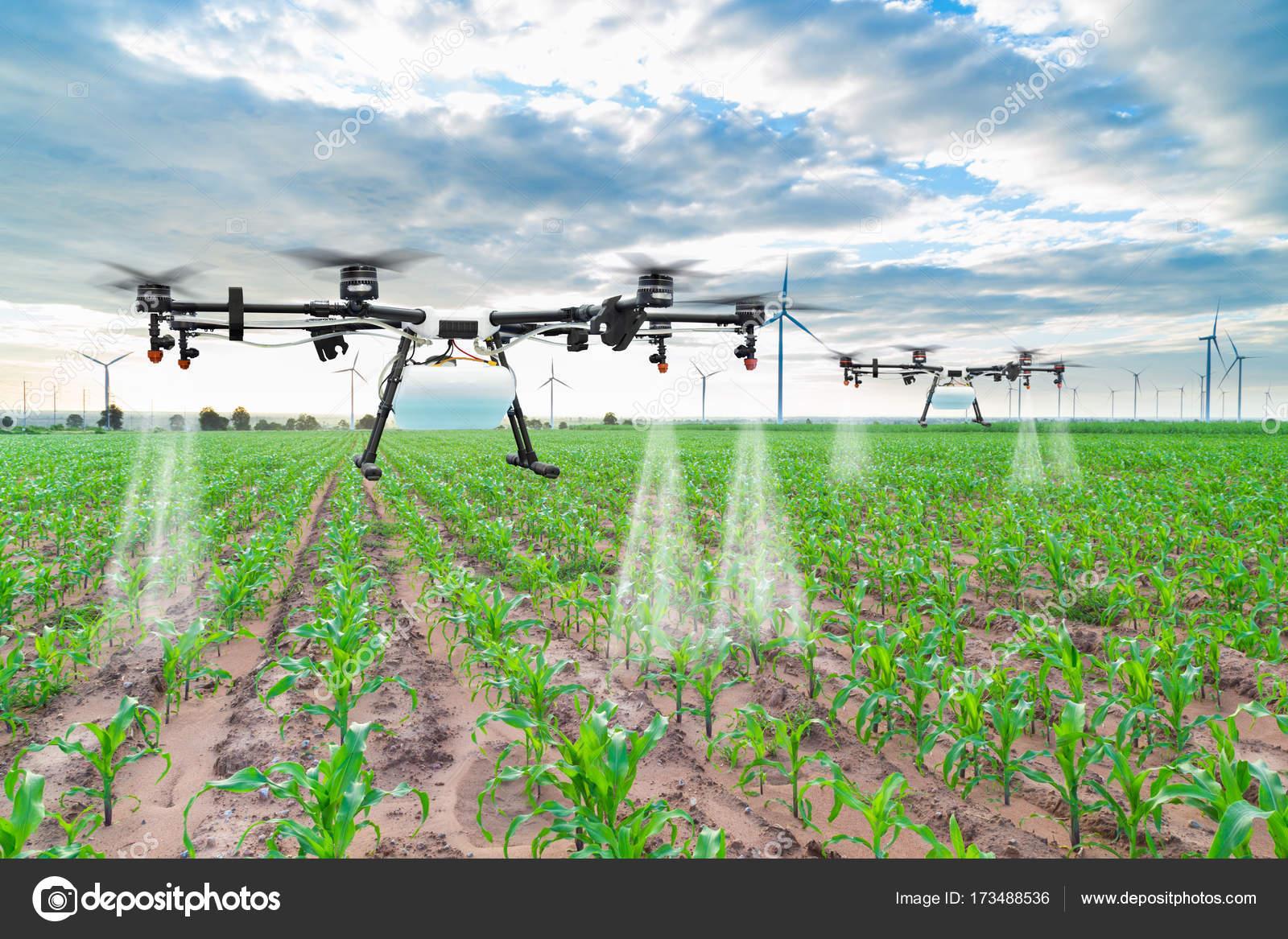 dronex pro batterie