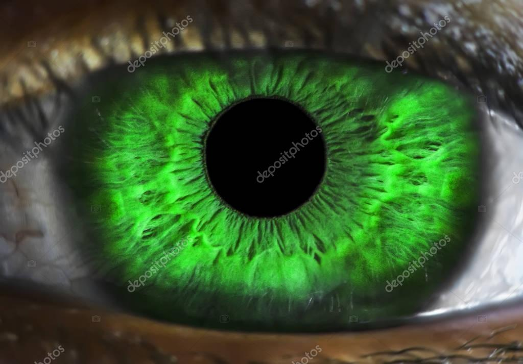 human green eye macro shot