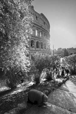 a touching scene with beggar woman on a sidewalk in front of the Colosseum in Rome, Italy. Black and white vertical photography