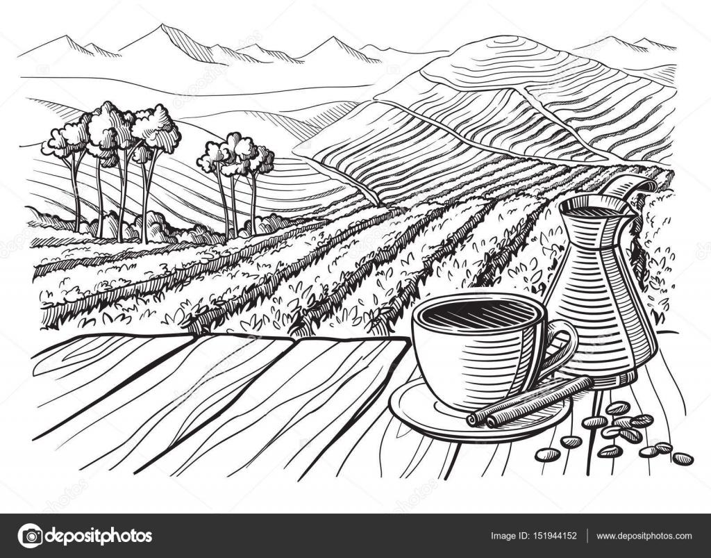 Kaffee Plantage Landschaft — Stockvektor © vectorgoods.gmail.com ...