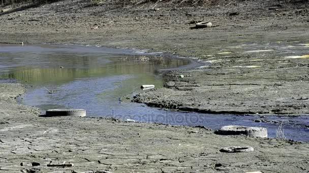 Umweltkatastrophe der Dürre des Flusses