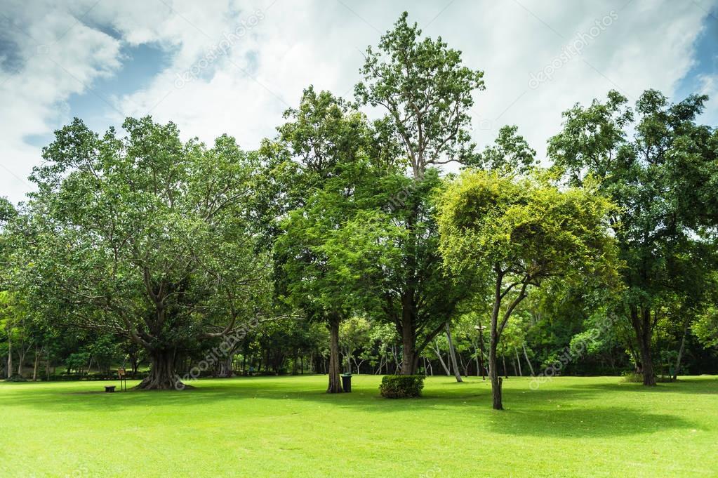 Exceptional Verde De Jardín Paisaje Con Cielo Nublado U2014 Fotos De Stock