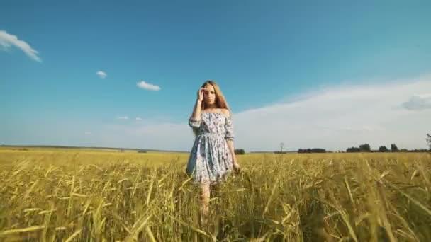 Szépség lány fut a sárga Búzamező napnyugtakor ég alatt. Szabadság fogalmát. Boldog asszony szabadban. A betakarítás. Búzamező, naplemente.
