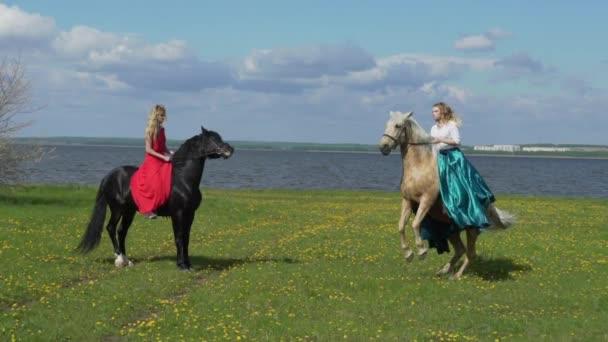 Krásná mladá žena na koni v poli s květinami. Kůň stojí na zadních nohách