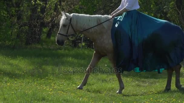 A girl with long hair, riding a horse in a long green and blue historical dress, looking at the camera, the horse is standing, shaking her head. Outside evening evening at sunset against the sky