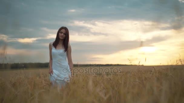 Egy fiatal nő, hosszú haj, fehér ruha, a búza területén állandó, és néz a kamerába portréja