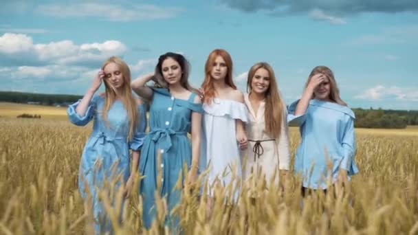 Five girls with long blond hair in a field of golden wheat. Smiling, looking at the camera.