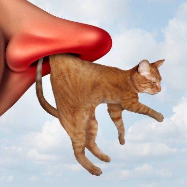 Cat Allergy Concept
