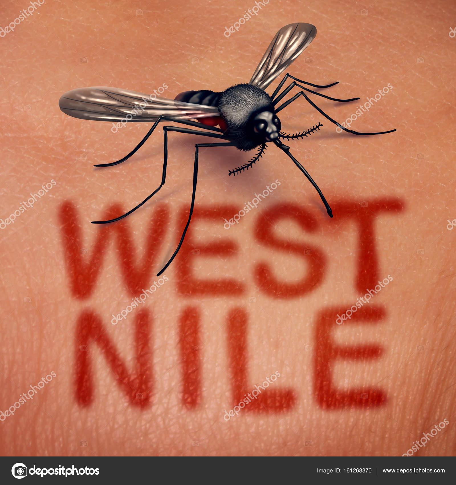 West Nile Disease — Stock Photo © lightsource #161268370