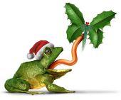 Icona della rana di Natale