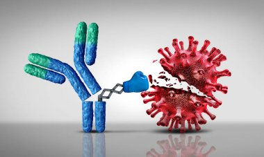 Antobody fighting virus and Immunoglobulin concept as antibodies attacking contagious viral cells and pathogens as a 3D illustration.