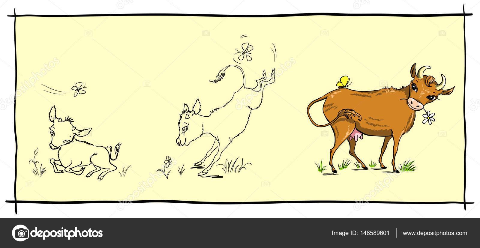 Ilustración de ternero lindo pequeño, que crece — Vector de stock ...
