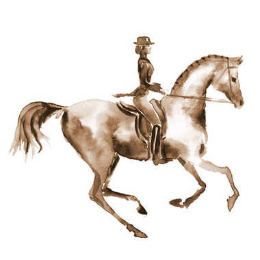Watercolor rider and dressage horse on white.
