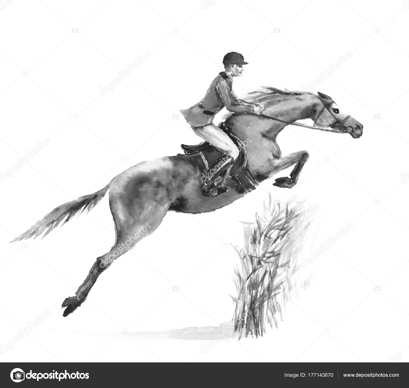 Horseback Rider Man Horse Jumping Forest White Black White Monochrome Stock Photo C Larisa Zorina 177143670