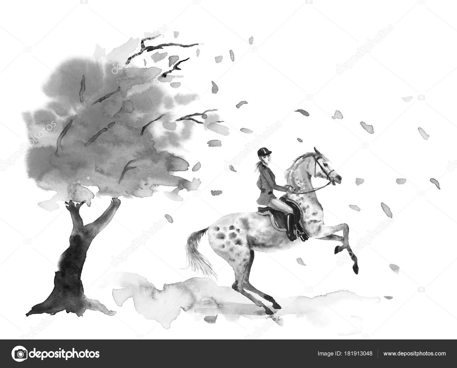 ᐈ Dappled Grey Horse Stock Pictures Royalty Free Dapple Grey Images Download On Depositphotos