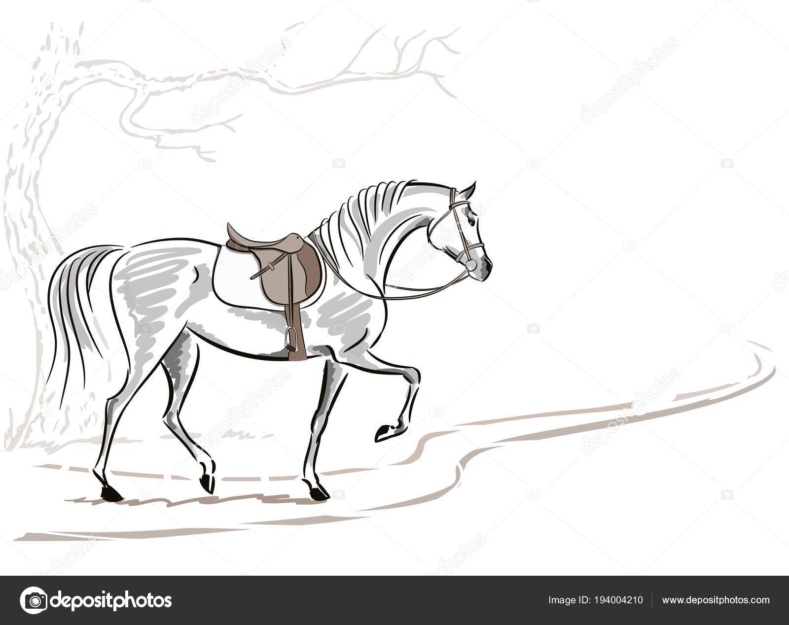 Beautiful Horse Saddle Bridle Tree English Equestrian Sport Fox Hunting Stock Vector C Larisa Zorina 194004210