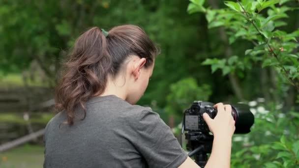 Ein junges Mädchen, Fotografin, fotografiert die wunderschöne Natur in einem Waldgebiet, wo ein Bach fließt.
