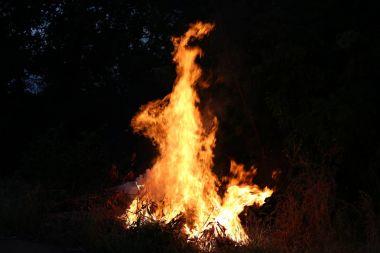 Fire flames burning grass