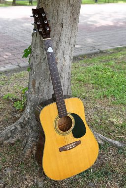 Classical guitar leaning against tree in nature