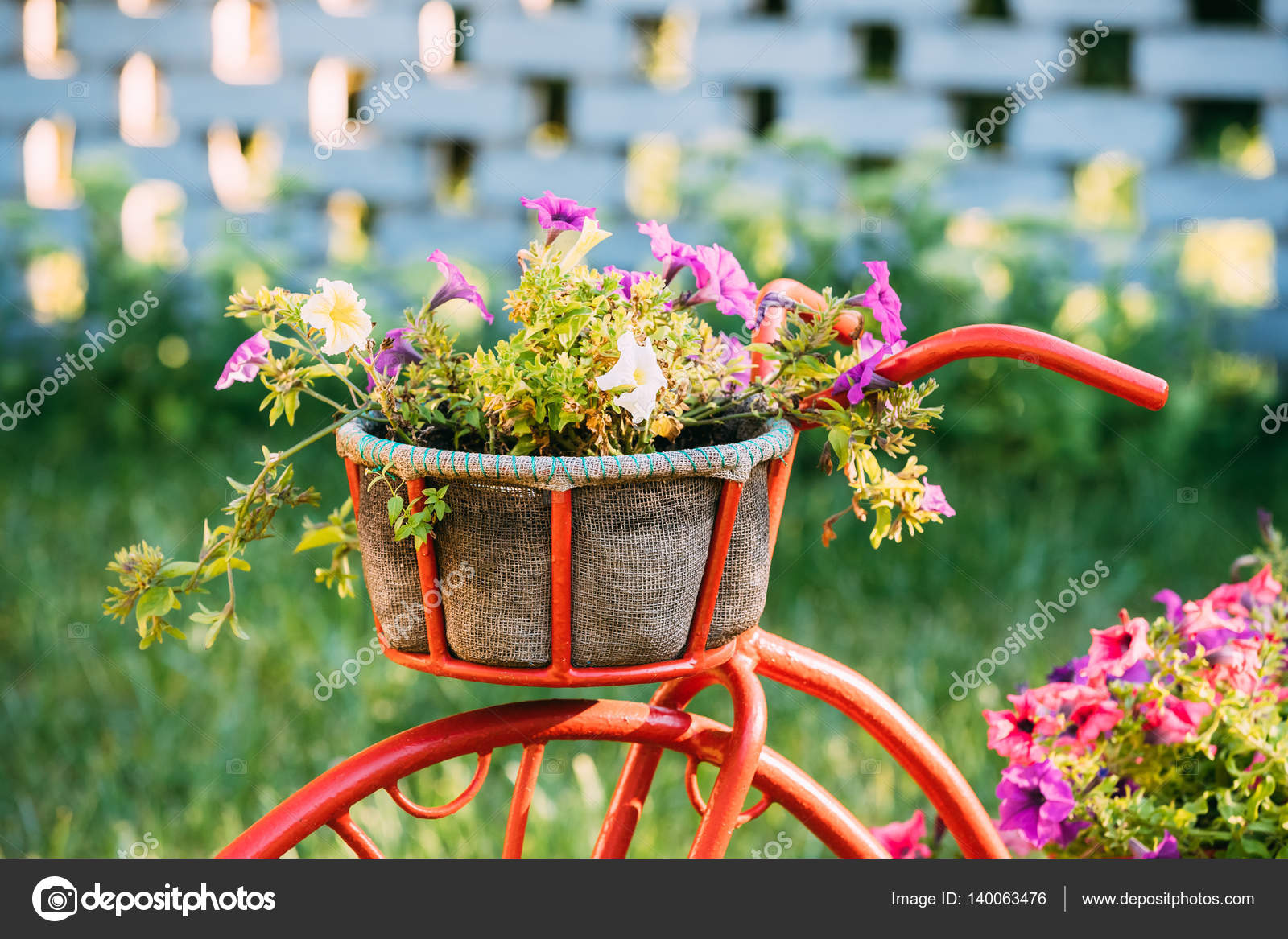 Decorative vintage model old bicycle equipped basket for Classic house with flower garden