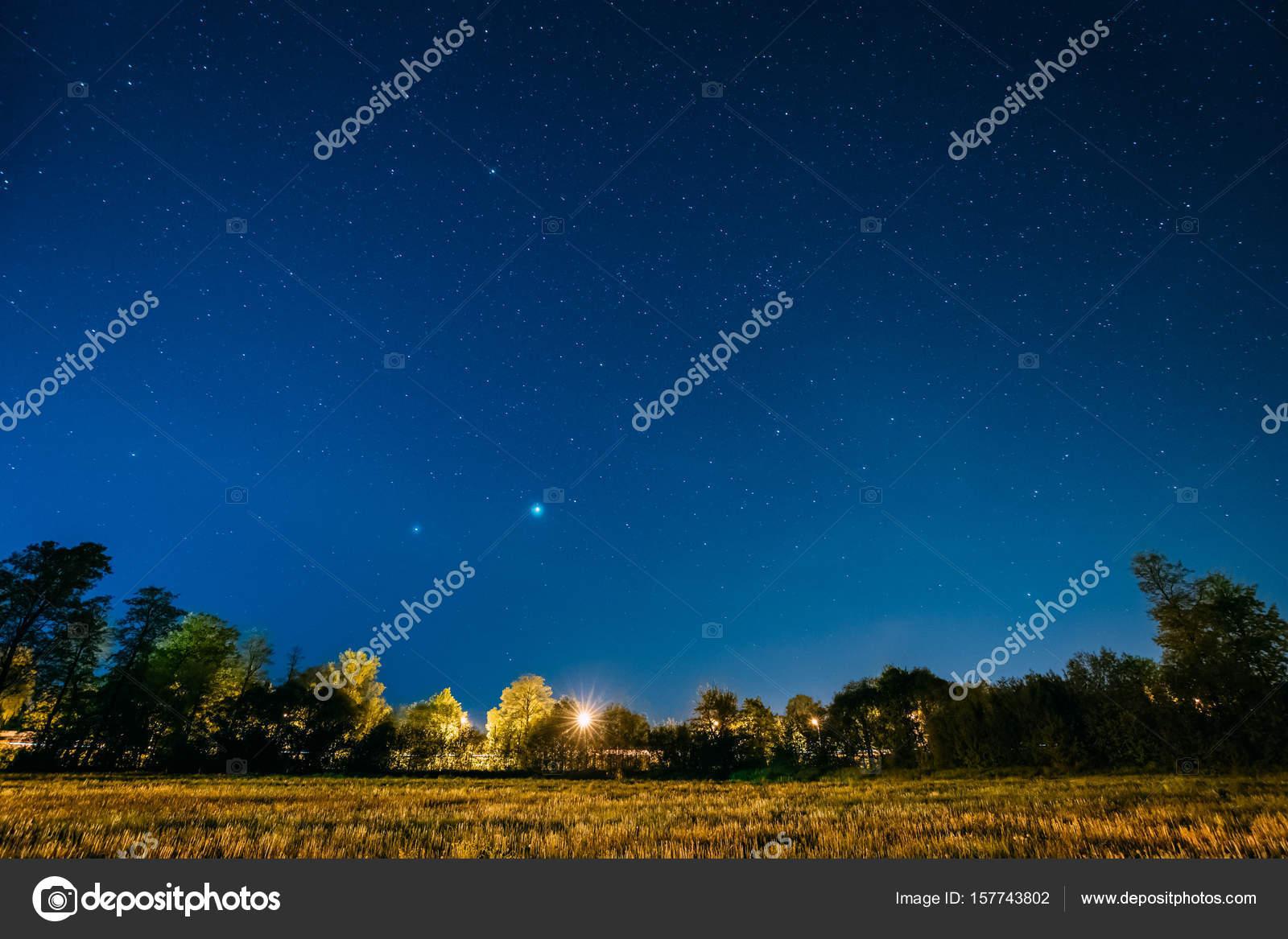 Imágenes Paisajes Nocturnos Reales Verde árboles De Bosques En El