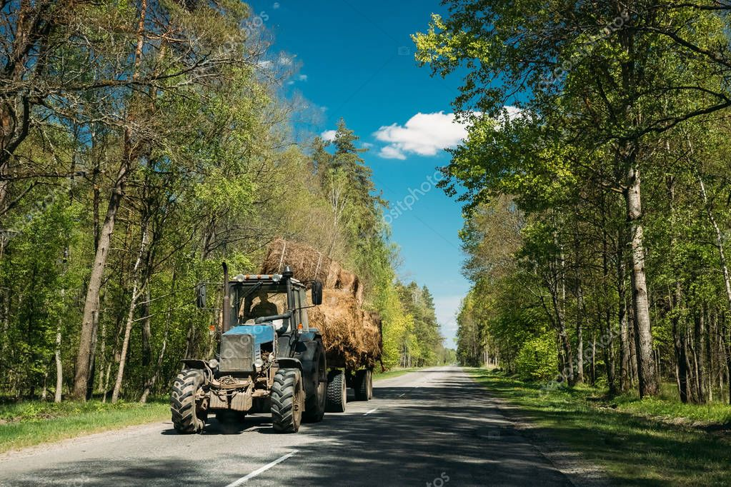 Tractor Is Carrying Hay On Cart. Tractor On Country Road Through