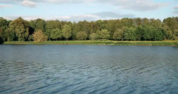 Folyó és erdő a nyári tájban. Fehéroroszország és Nyugat-Európa jellegzetes természete Oroszország