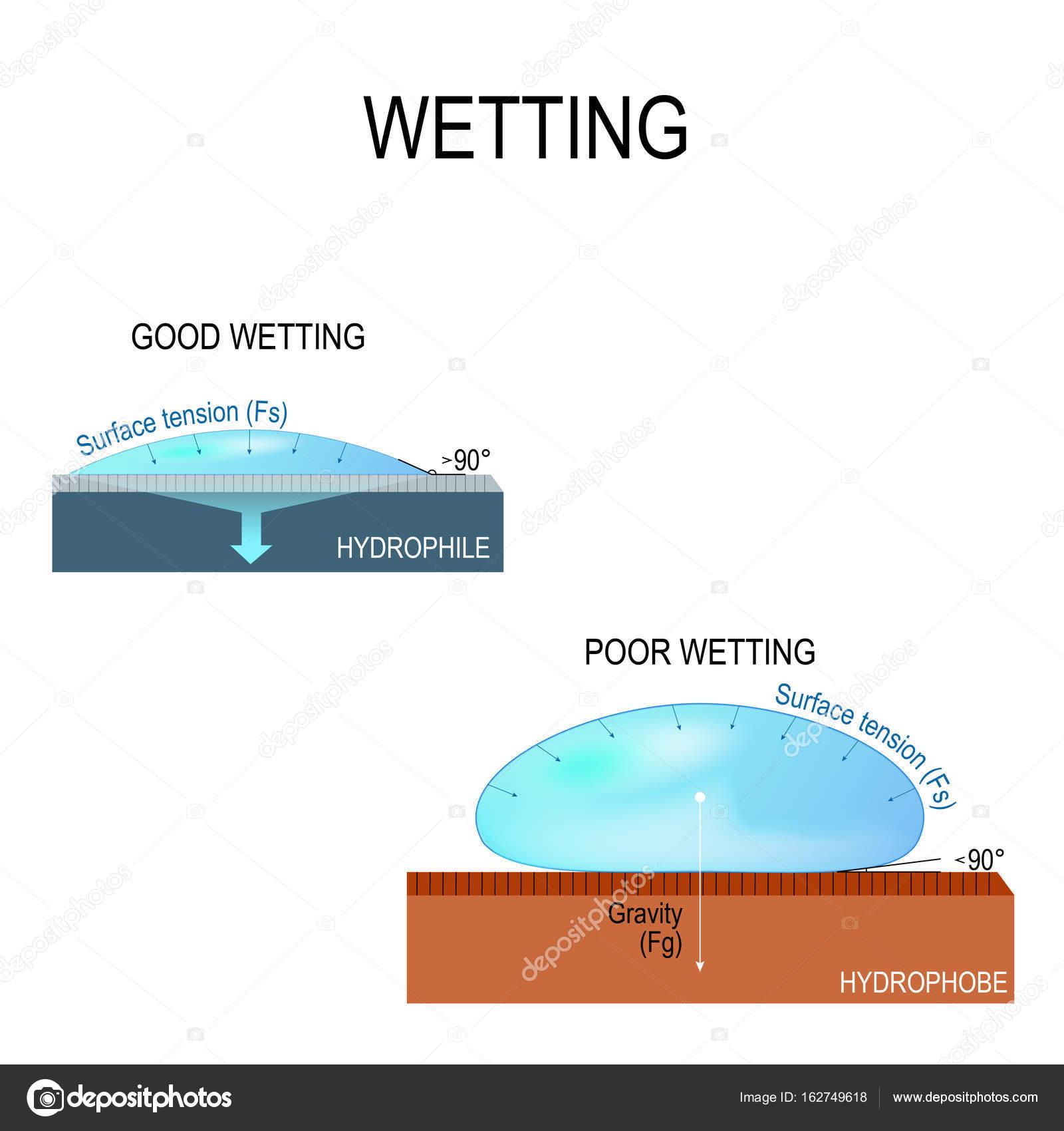親水性および疎水性表面 — スト...