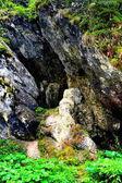 Paesaggio in montagne di Apuseni, Transilvania, che appartiene ai Carpazi Rumeni Western, chiamato anche Occidentali in rumeno. Le montagne di Apuseni hanno circa 400 grotte