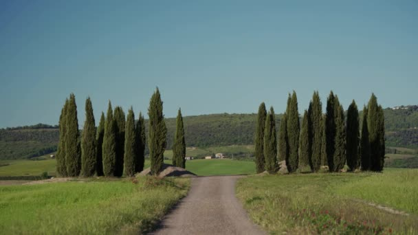 Scenic road in Tuscan landscapes