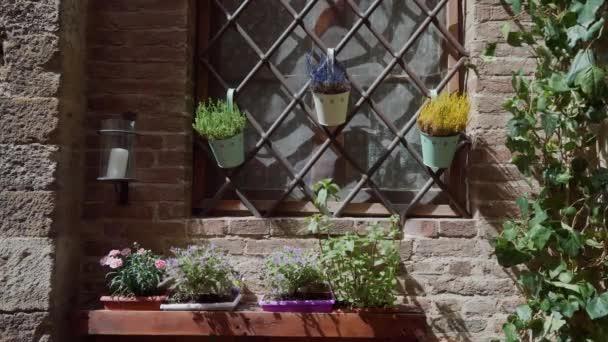 Bunte Töpfe hängen an Gittern am Fenster. Blumen in Keramiktöpfen auf Fensterbank