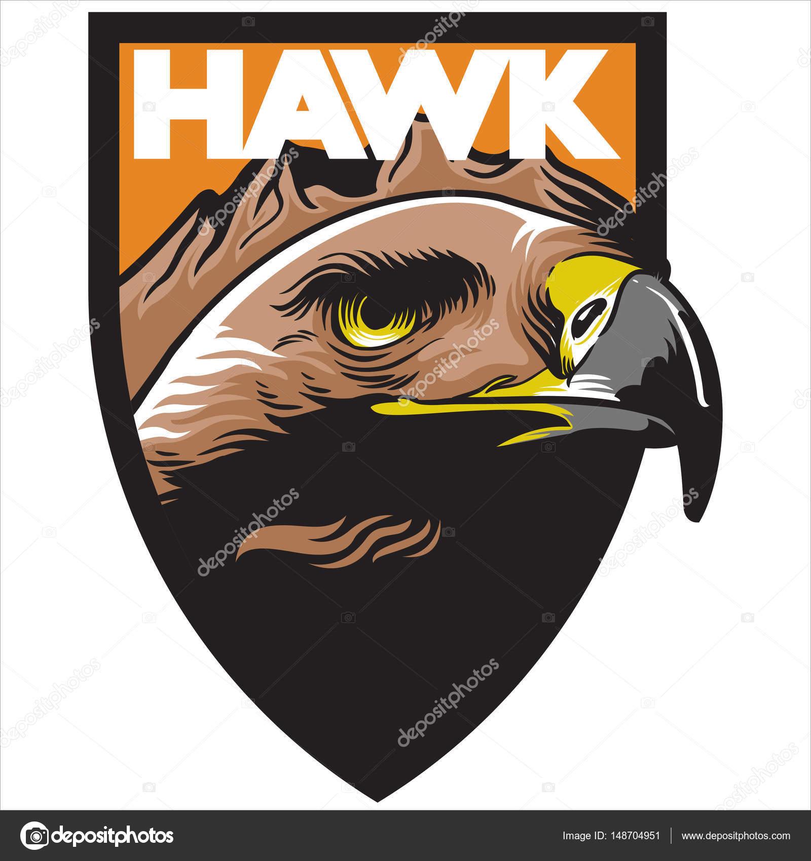 Portfolio Ironstone72 Stock Photos Illustrations And Vector Art Bald Eagle Diagram Golden Related Keywords Suggestions Hawk Orange Background Mascot Logo