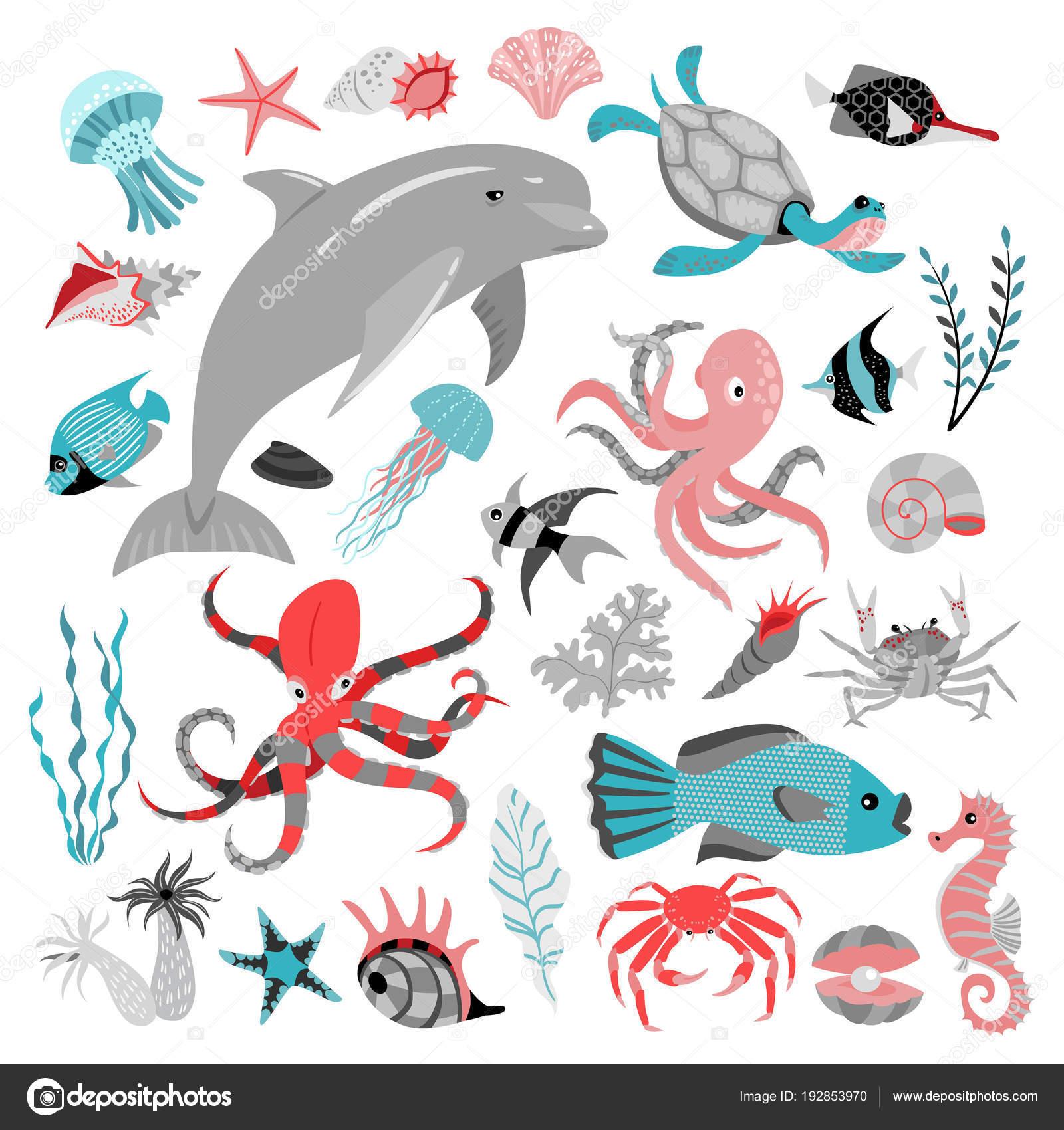 熱帯魚動物海藻やサンゴのベクトル イラストのセットです海の生活