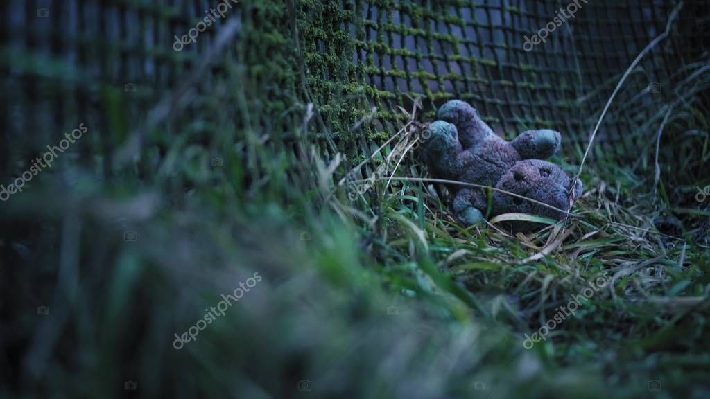 An old fence, overgrown with moss and an abandoned childrens toy. Blurred shot