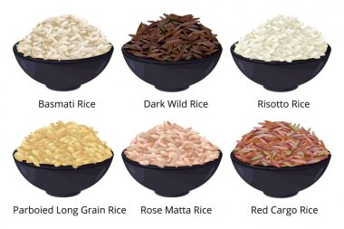 Different type of rice. Long grain, brown, white and other. Vector illustrations in cartoon style