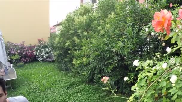 muž výstřižky bud růže v zahradě