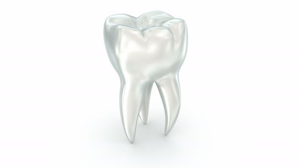 Zahn über weiße Oberfläche. 3D-Animation.