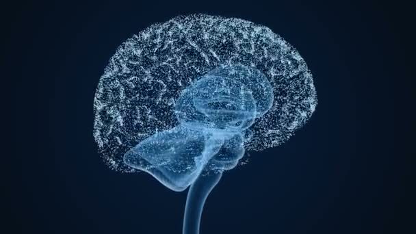 Human brain from dots 3d concept, 3D Animation.