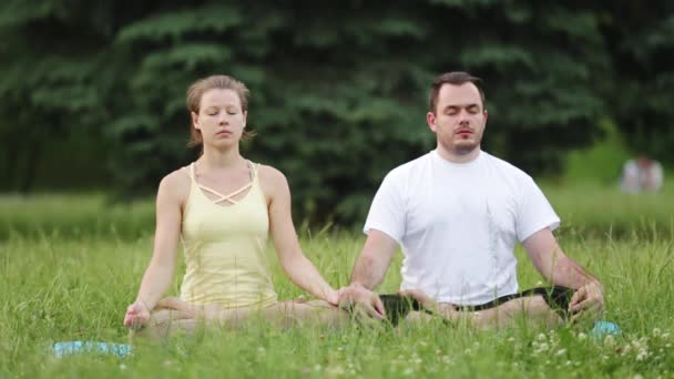A man and a woman meditate in bliss. Young yoga instructors practice in a city park on green grass. Successful young people perform acro yoga exercises.