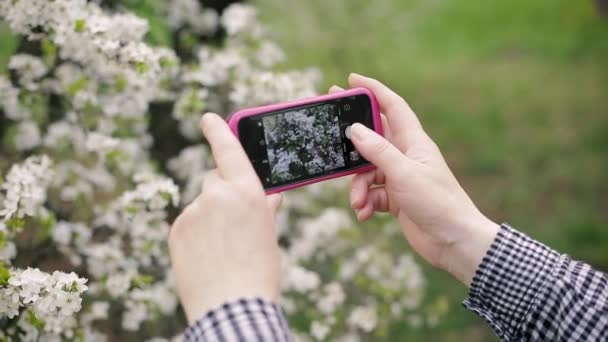Senior woman photographing a blossoming tree on a smartphone.