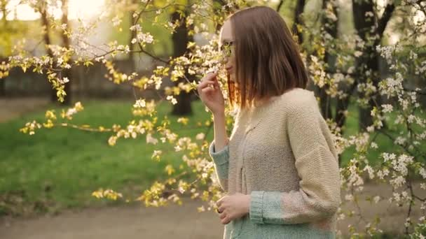 Pretty smiling brown-haired girlenjoys smell of white blossoming cherry flower.