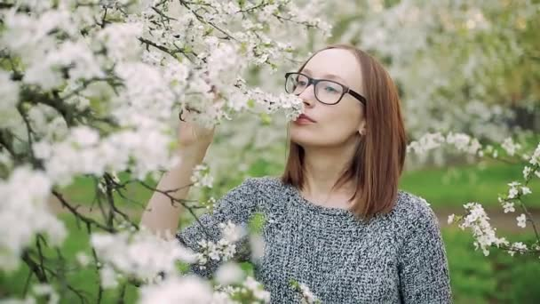 Young smiling and laughing brunette woman enjoys smell of white blossoming cherry flower blooms on branch on sunny day in countryside garden