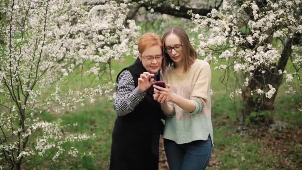 Senior mother and her adult daughter watching photos in blooming garden.