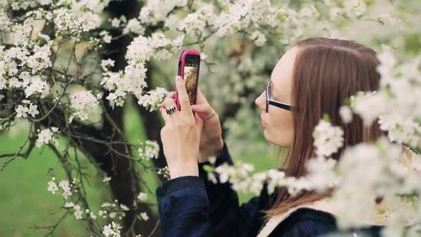Beautiful girl takes photos of blossom spring tree flowers on a smart phone.