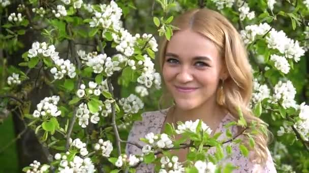 Beauty young woman enjoying nature in spring apple orchard, Happy Beautiful girl in Garden with blooming trees. Portrait of Beautiful blonde girl posing in blooming tree branches with white flowers 4k