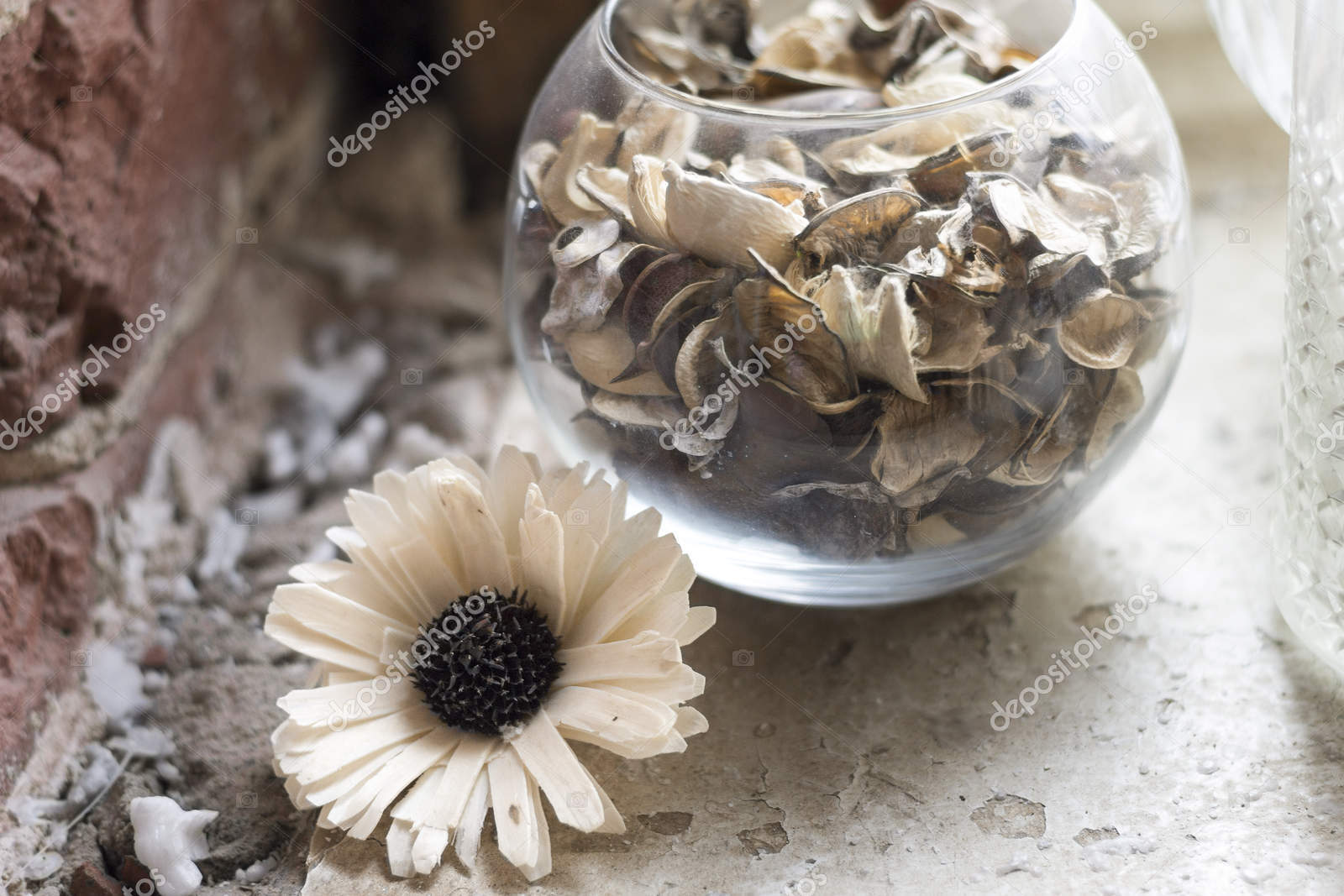 There Is A Dried White Flower Stock Photo Irishka032 151971660