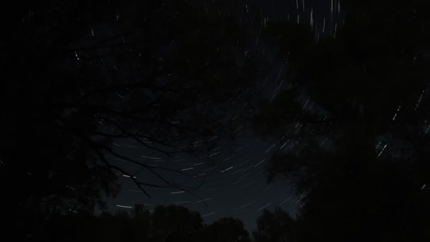 A cumulative or continuous star trail timelapse of the dark night sky in Wisconsin with stars creating a circular pattern about a center point and faint outline of trees at the horizon.