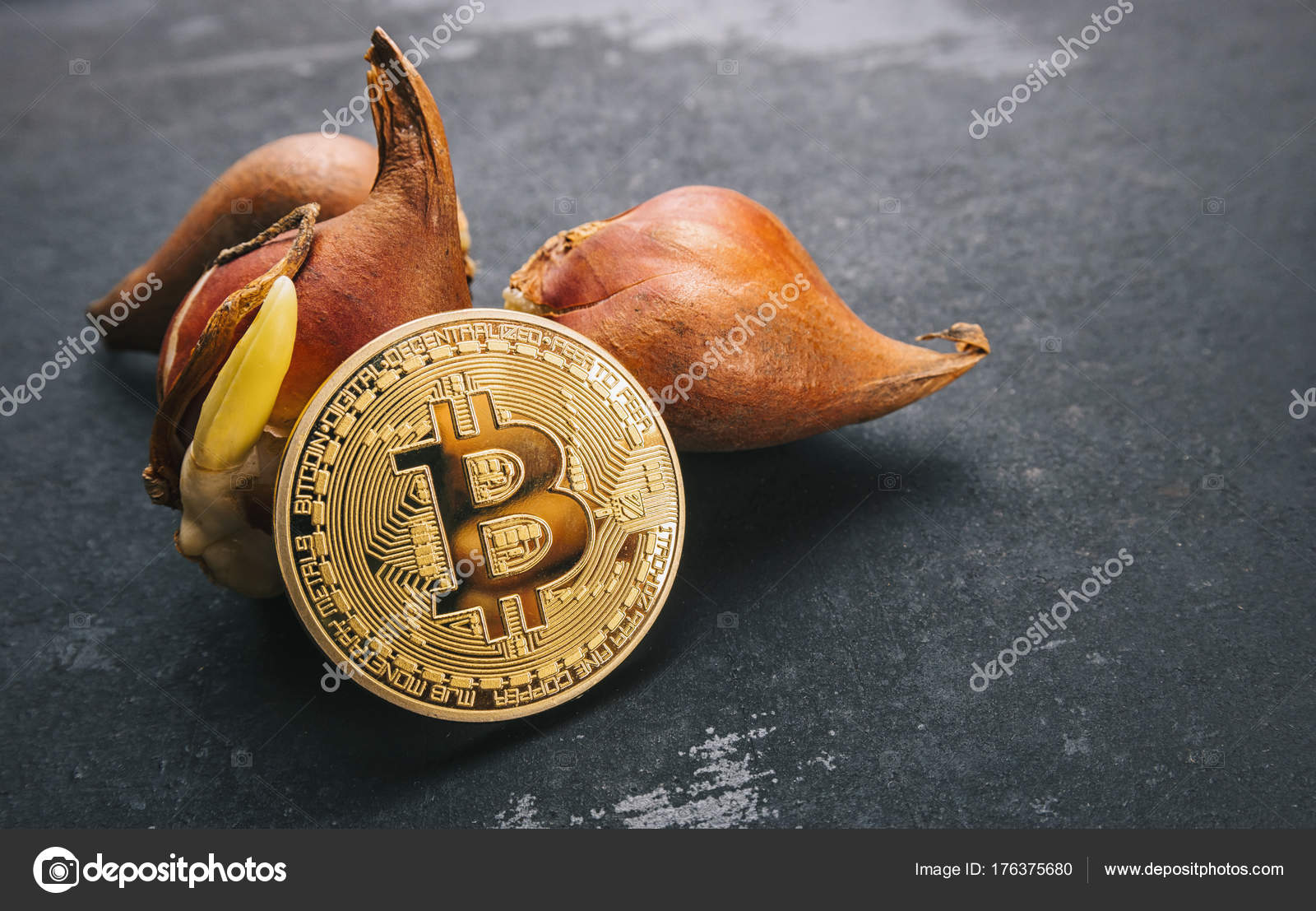jj coin cryptocurrency